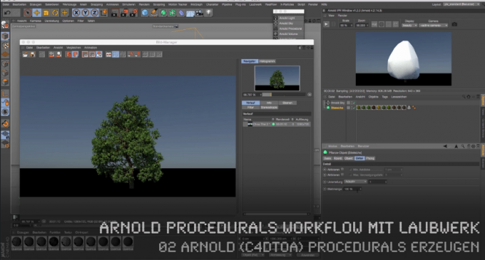 SolidAngle ARNOLD Procedurals Workflow mit LAUBWERK