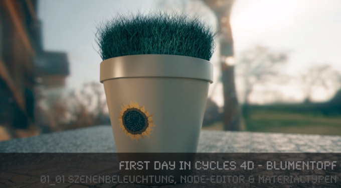 First Day in Cycles 4D